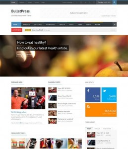 WordPress magazine Themes (12)