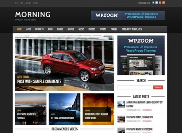 WordPress magazine Themes (13)