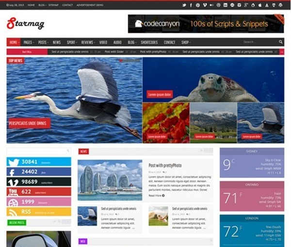WordPress magazine Themes (18)