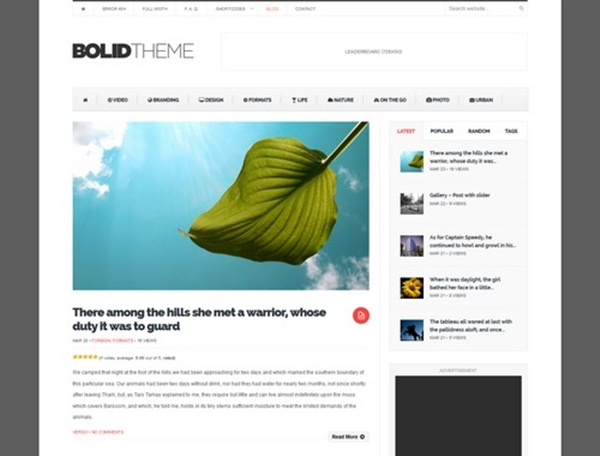 WordPress magazine Themes (2)
