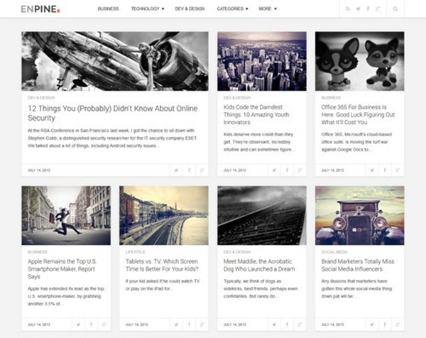 WordPress magazine Themes (21)