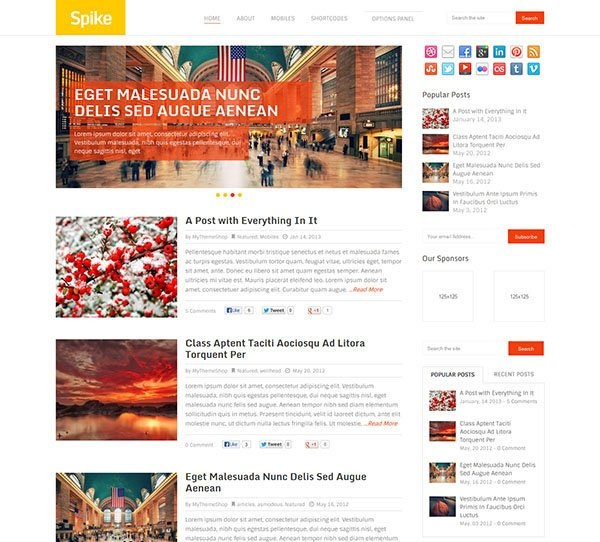 WordPress magazine Themes (22)
