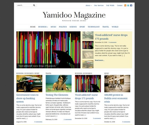 WordPress magazine Themes (3)