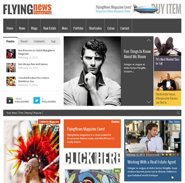 WordPress magazine Themes (6)