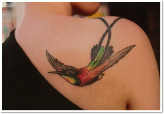 38428a7aa8c17 ... shoulder blades? Hummingbird Tattoo Designs.  57069120248477410_pBdoe1Ud_f Bird_tattoo_132 ...