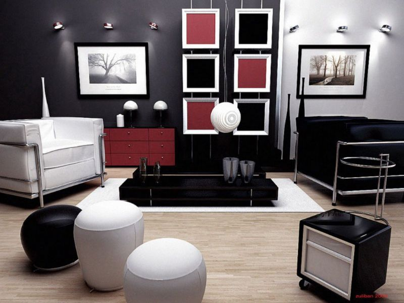 black-adn-white-living-room-decoration