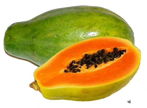 fruits papaya 3