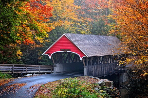 Spectacular Pictures Of Covered Bridges (36)