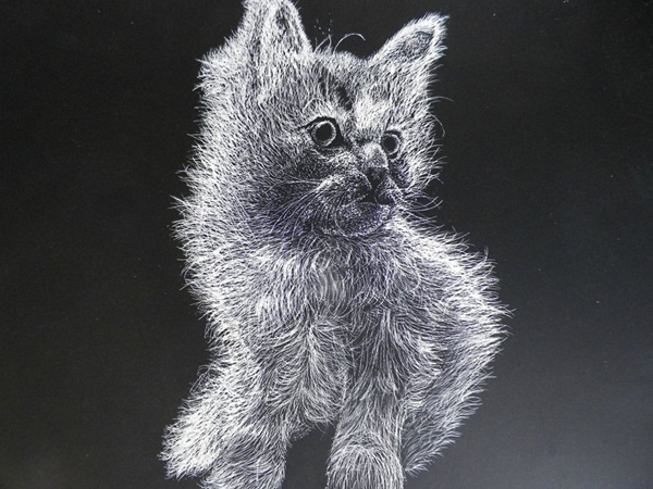 Absolutely Brilliant Scratch Art Ideas (59)