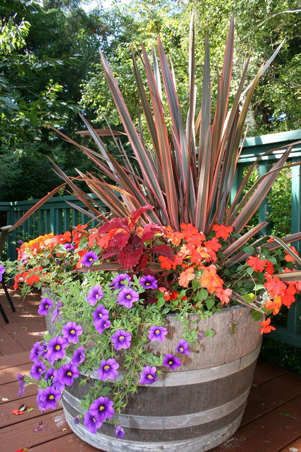 40 Creative Garden Container Ideas and Plant Pots