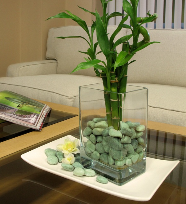 Creative and Fresh Office Plant Decoration Ideas (10)