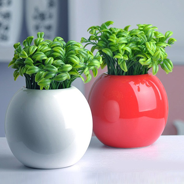 Creative and Fresh Office Plant Decoration Ideas (12)