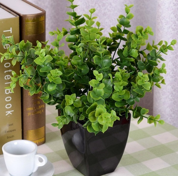 Creative and Fresh Office Plant Decoration Ideas (2)