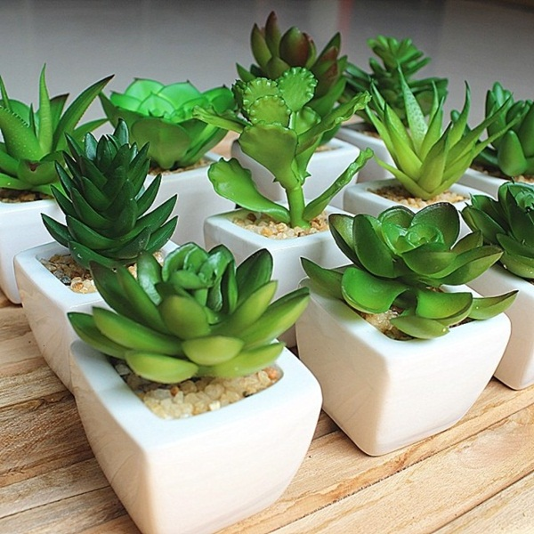 Creative and Fresh Office Plant Decoration Ideas (20)