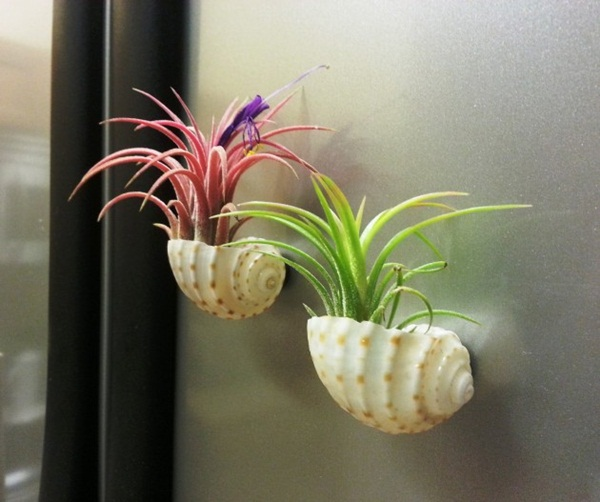 Creative and Fresh Office Plant Decoration Ideas (5)