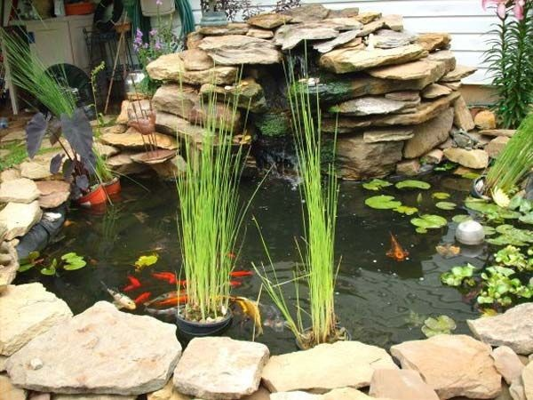 30 surprising indoor water garden ideas for Fish pond decorations