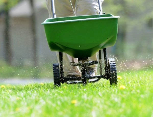 10 Basic Lawn Care Tips 2
