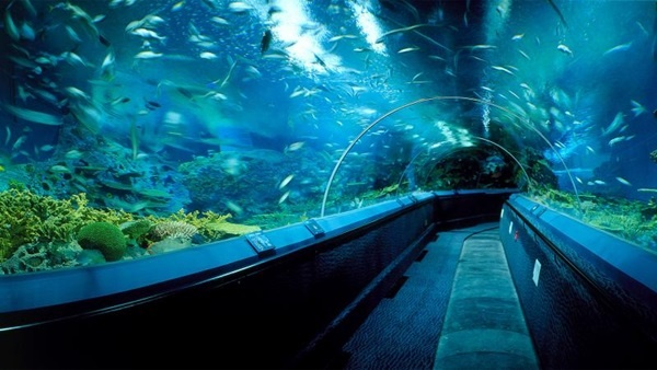 10 Largest Aquariums in the World 2