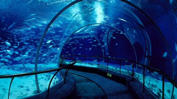 10 Largest Aquariums in the World 3